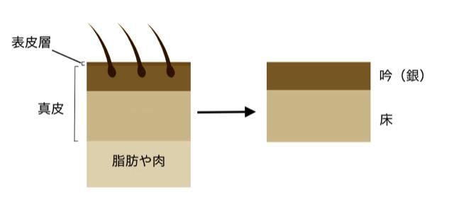 革の構造(吟と床)